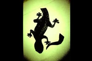 Lizards get tails
